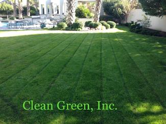 All landscapes require maintenance and watering. Regular care will ensure that everything stays in balance and healthy gardening. Turfgrass takes on a dull, apearance and leaves begin to roll when they need water. the best time to water is early morning when winds are calmer and temperatures are lower. Clean Green, Inc. By Clean Green, Inc.